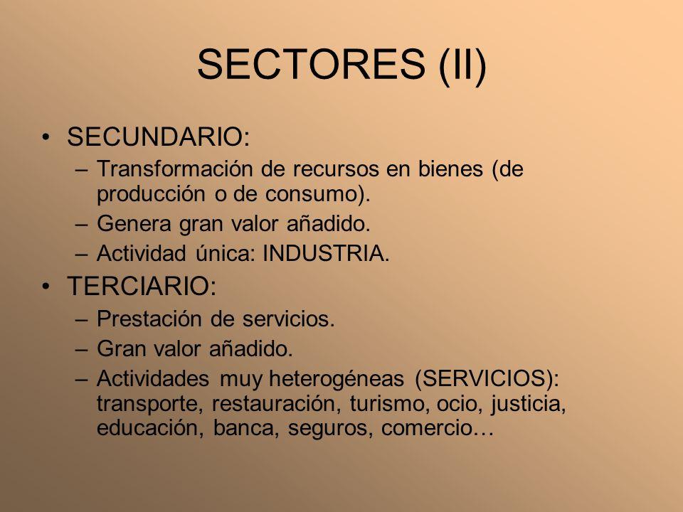 SECTORES (II) SECUNDARIO: –Transformación de recursos en bienes (de producción o de consumo). –Genera gran valor añadido. –Actividad única: INDUSTRIA.