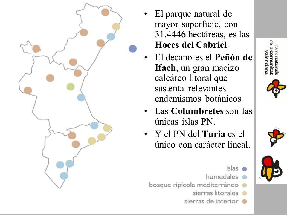 El parque natural de mayor superficie, con 31.4446 hectáreas, es las Hoces del Cabriel. El decano es el Peñón de Ifach, un gran macizo calcáreo litora