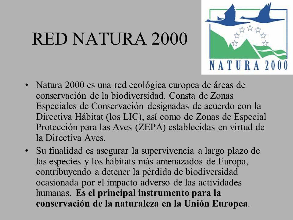 RED NATURA 2000 Natura 2000 es una red ecológica europea de áreas de conservación de la biodiversidad. Consta de Zonas Especiales de Conservación desi