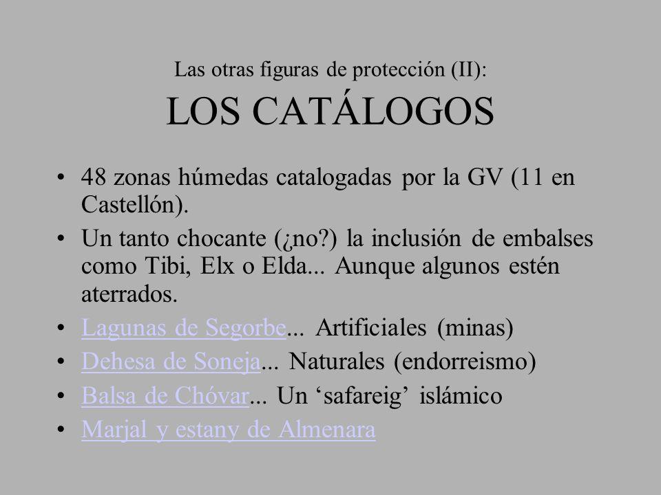 Las otras figuras de protección (II): LOS CATÁLOGOS 48 zonas húmedas catalogadas por la GV (11 en Castellón). Un tanto chocante (¿no?) la inclusión de