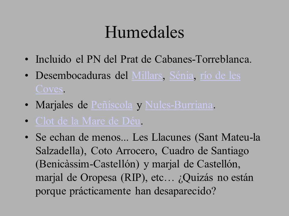 Humedales Incluido el PN del Prat de Cabanes-Torreblanca. Desembocaduras del Millars, Sénia, río de les Coves.MillarsSéniarío de les Coves Marjales de