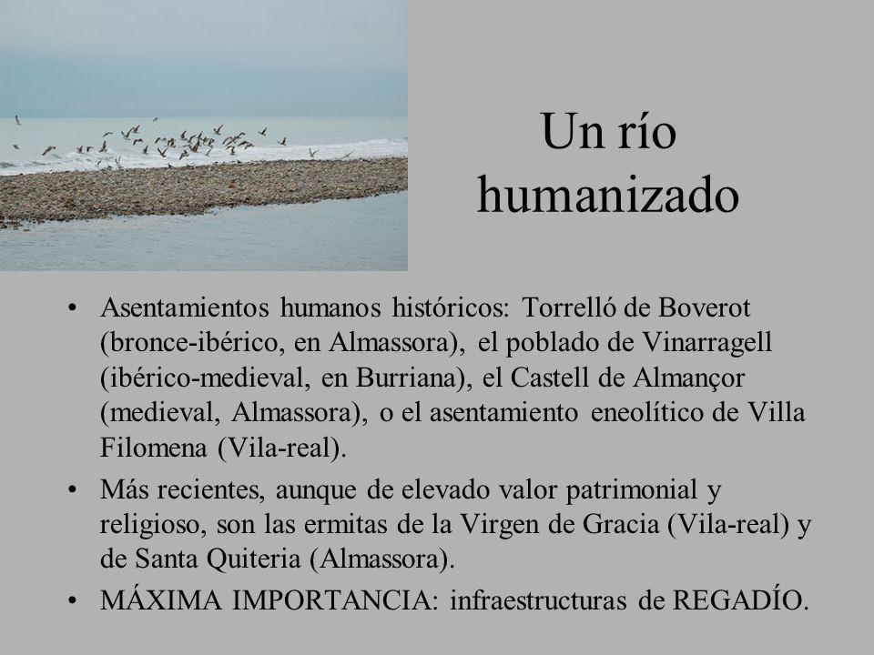 Un río humanizado Asentamientos humanos históricos: Torrelló de Boverot (bronce-ibérico, en Almassora), el poblado de Vinarragell (ibérico-medieval, e