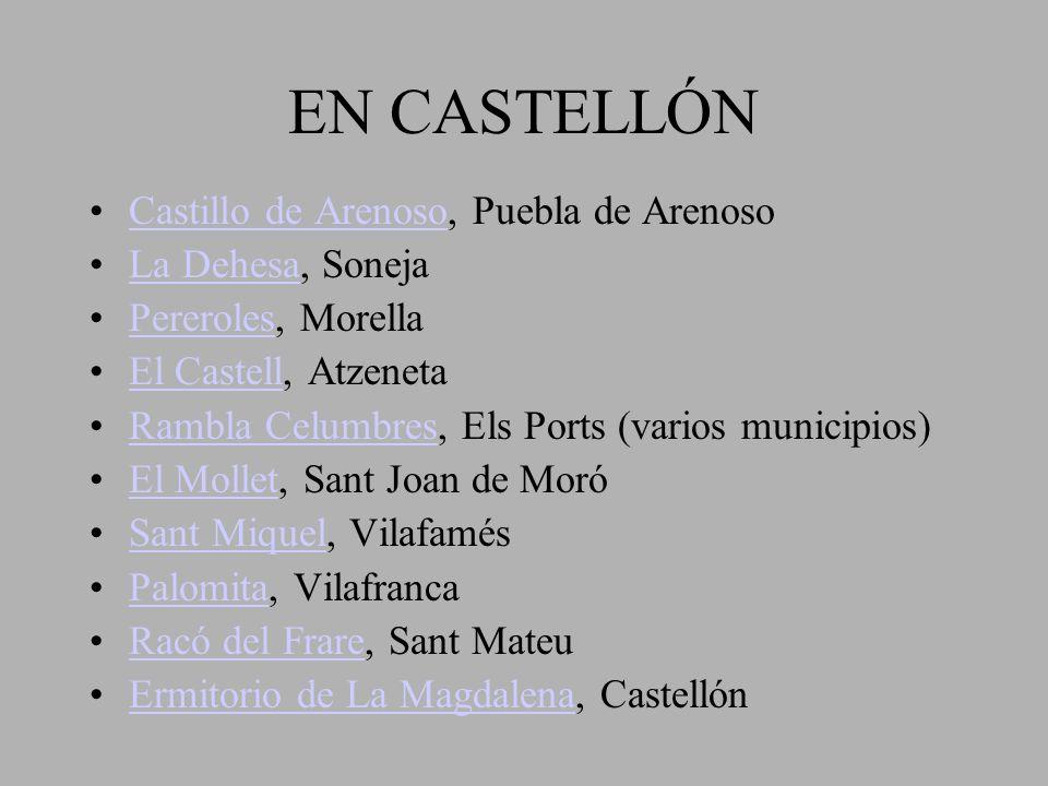 EN CASTELLÓN Castillo de Arenoso, Puebla de ArenosoCastillo de Arenoso La Dehesa, SonejaLa Dehesa Pereroles, MorellaPereroles El Castell, AtzenetaEl C