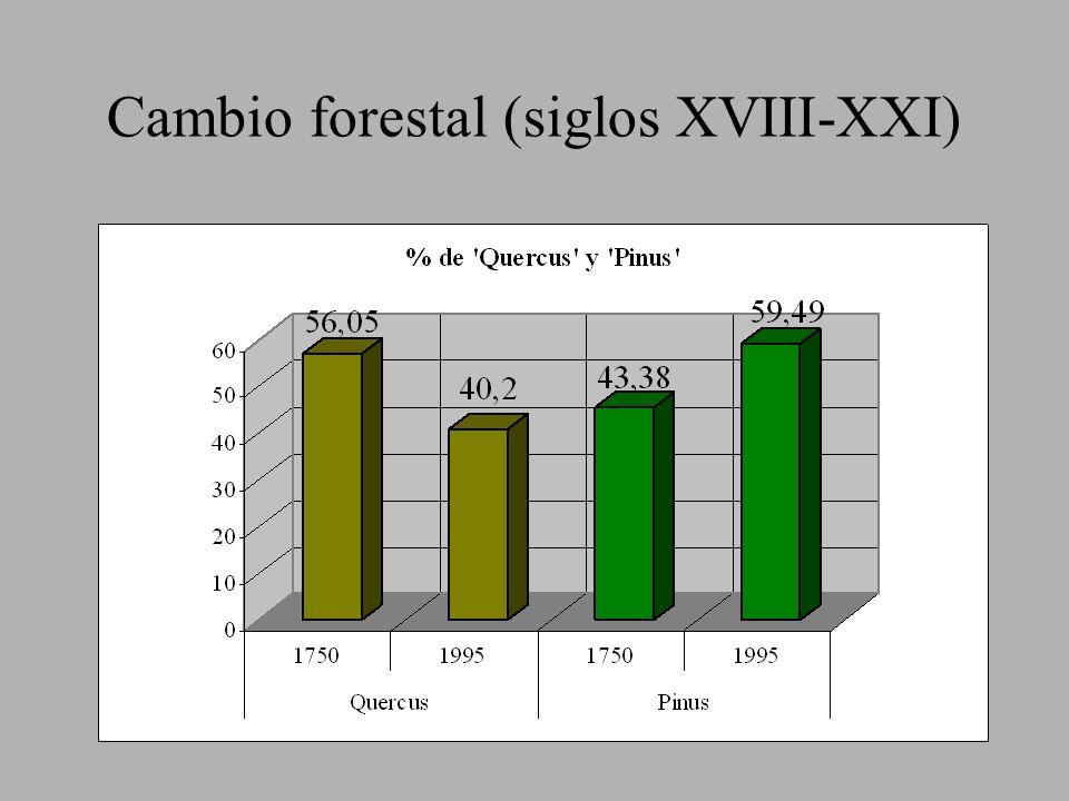 Cambio forestal (siglos XVIII-XXI)