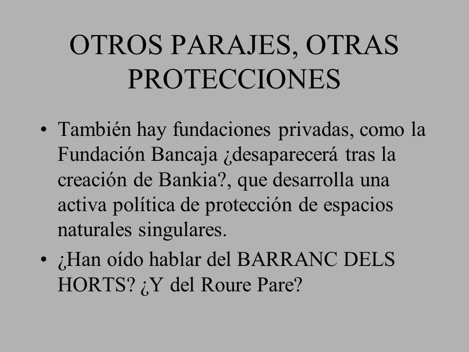 OTROS PARAJES, OTRAS PROTECCIONES También hay fundaciones privadas, como la Fundación Bancaja ¿desaparecerá tras la creación de Bankia?, que desarroll