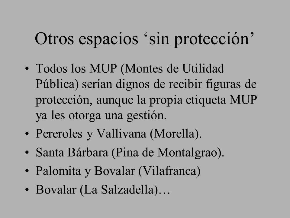Otros espacios sin protección Todos los MUP (Montes de Utilidad Pública) serían dignos de recibir figuras de protección, aunque la propia etiqueta MUP