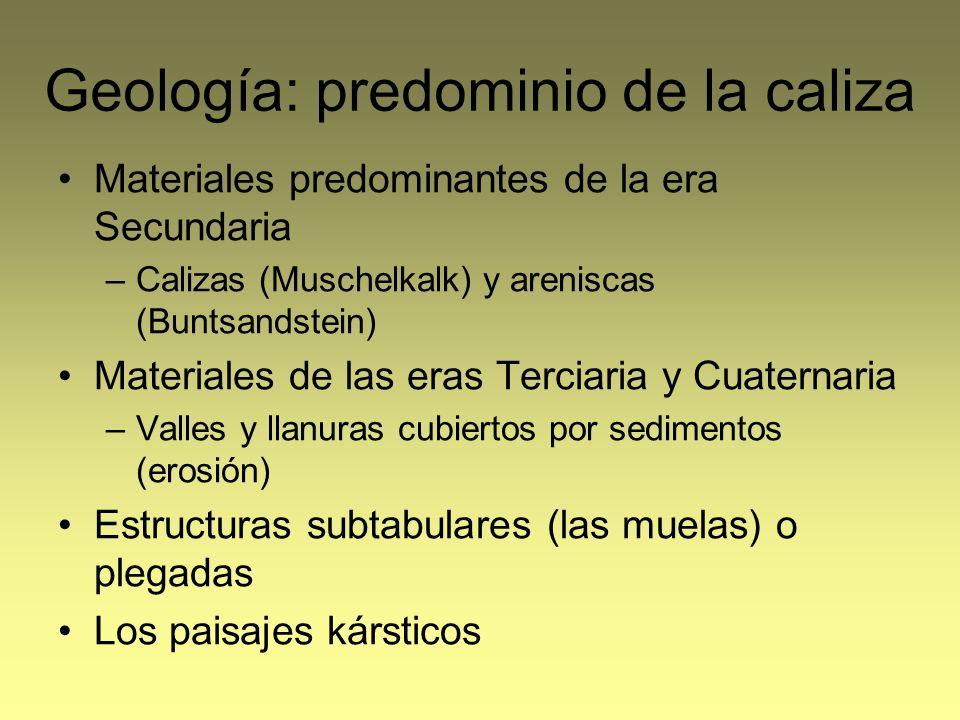 Geología: predominio de la caliza Materiales predominantes de la era Secundaria –Calizas (Muschelkalk) y areniscas (Buntsandstein) Materiales de las e