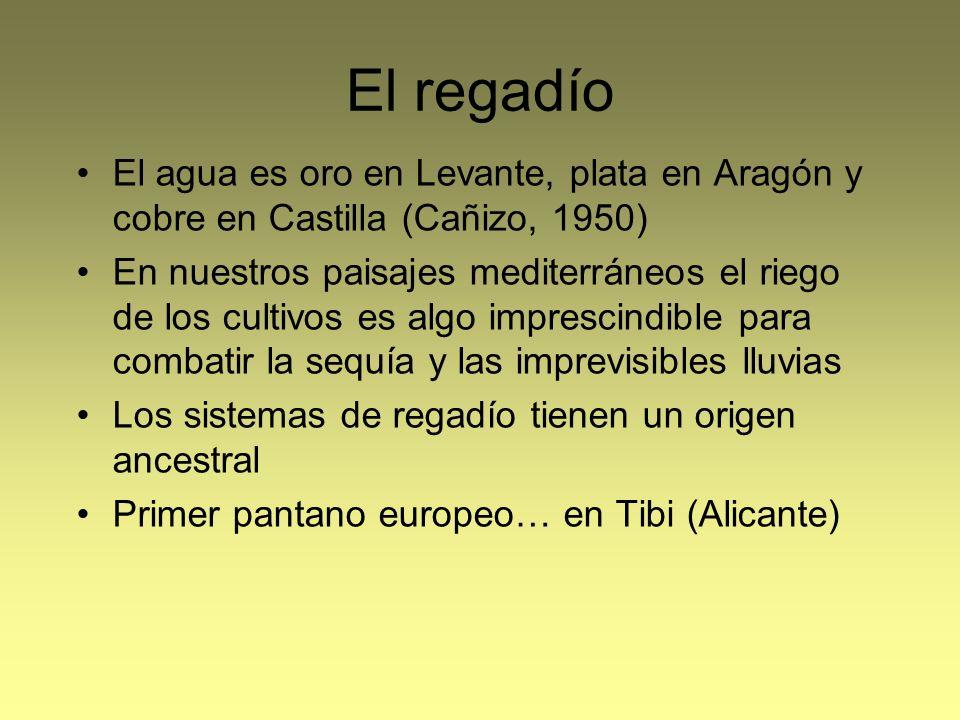 El regadío El agua es oro en Levante, plata en Aragón y cobre en Castilla (Cañizo, 1950) En nuestros paisajes mediterráneos el riego de los cultivos e