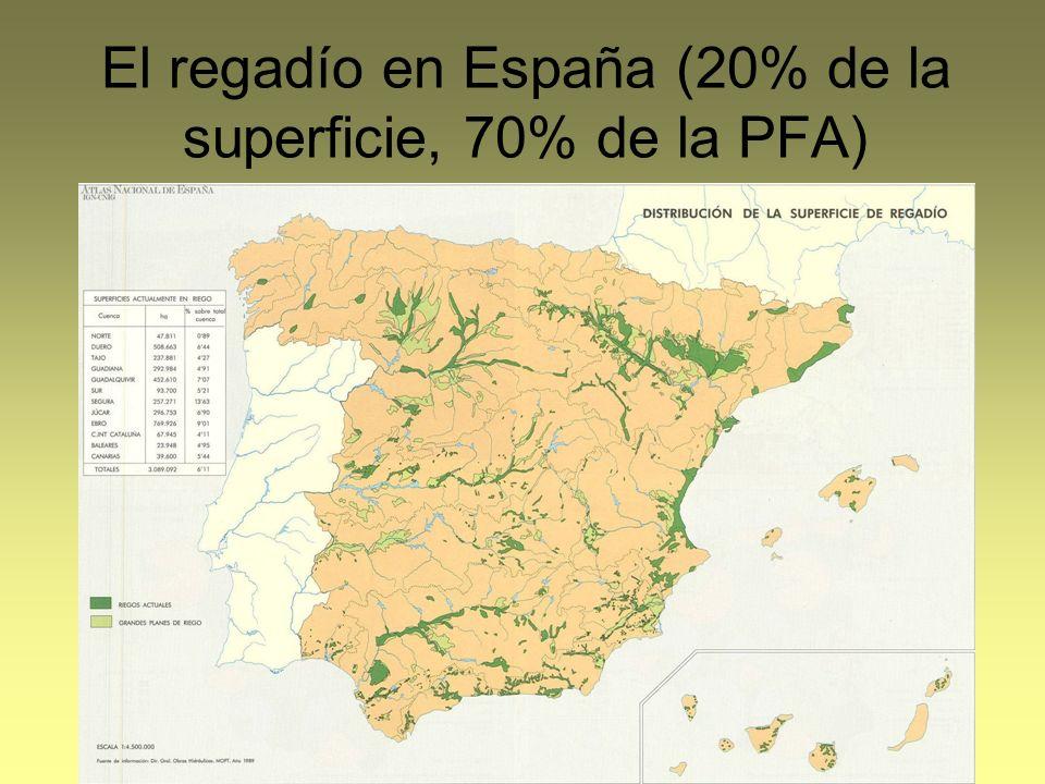 El regadío en España (20% de la superficie, 70% de la PFA)