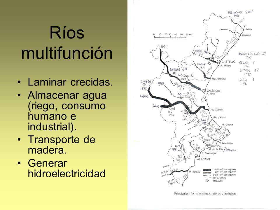 Ríos multifunción Laminar crecidas. Almacenar agua (riego, consumo humano e industrial). Transporte de madera. Generar hidroelectricidad