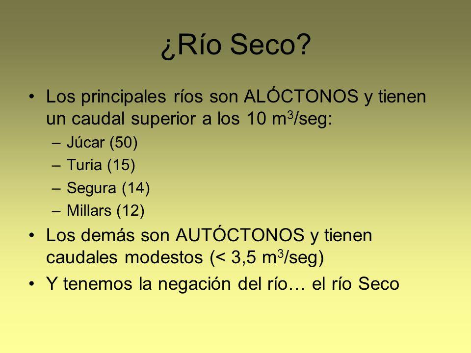 ¿Río Seco? Los principales ríos son ALÓCTONOS y tienen un caudal superior a los 10 m 3 /seg: –Júcar (50) –Turia (15) –Segura (14) –Millars (12) Los de