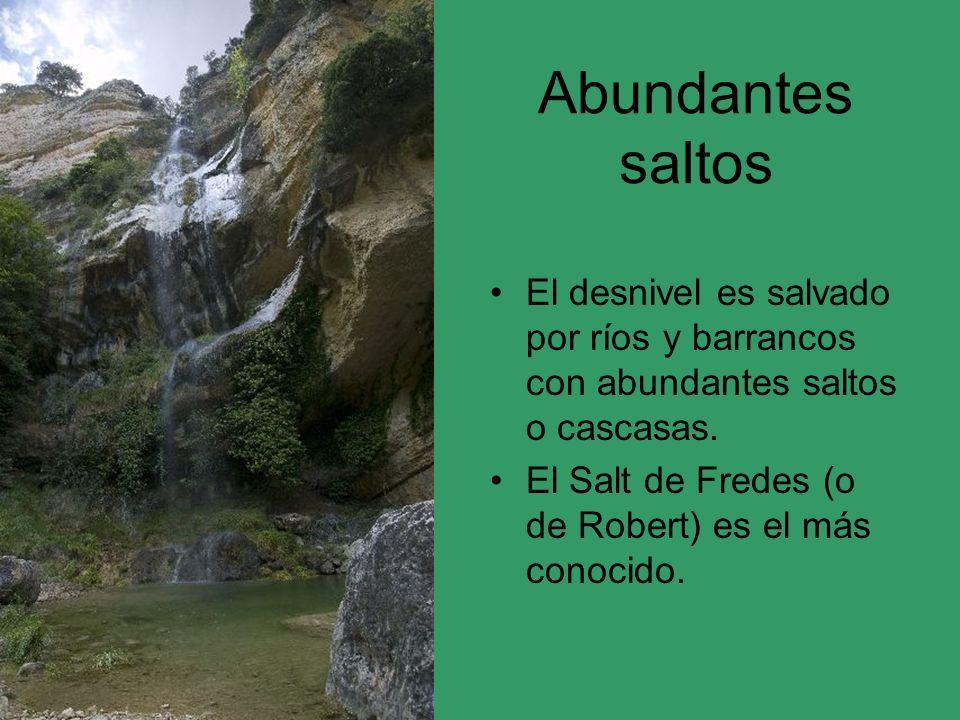 Abundantes saltos El desnivel es salvado por ríos y barrancos con abundantes saltos o cascasas. El Salt de Fredes (o de Robert) es el más conocido.