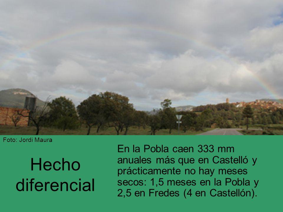 Hecho diferencial En la Pobla caen 333 mm anuales más que en Castelló y prácticamente no hay meses secos: 1,5 meses en la Pobla y 2,5 en Fredes (4 en