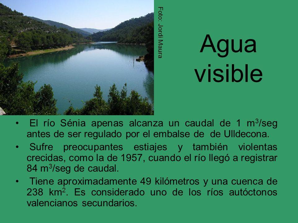 Agua visible El río Sénia apenas alcanza un caudal de 1 m 3 /seg antes de ser regulado por el embalse de de Ulldecona. Sufre preocupantes estiajes y t