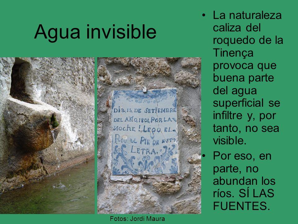 Agua invisible La naturaleza caliza del roquedo de la Tinença provoca que buena parte del agua superficial se infiltre y, por tanto, no sea visible. P