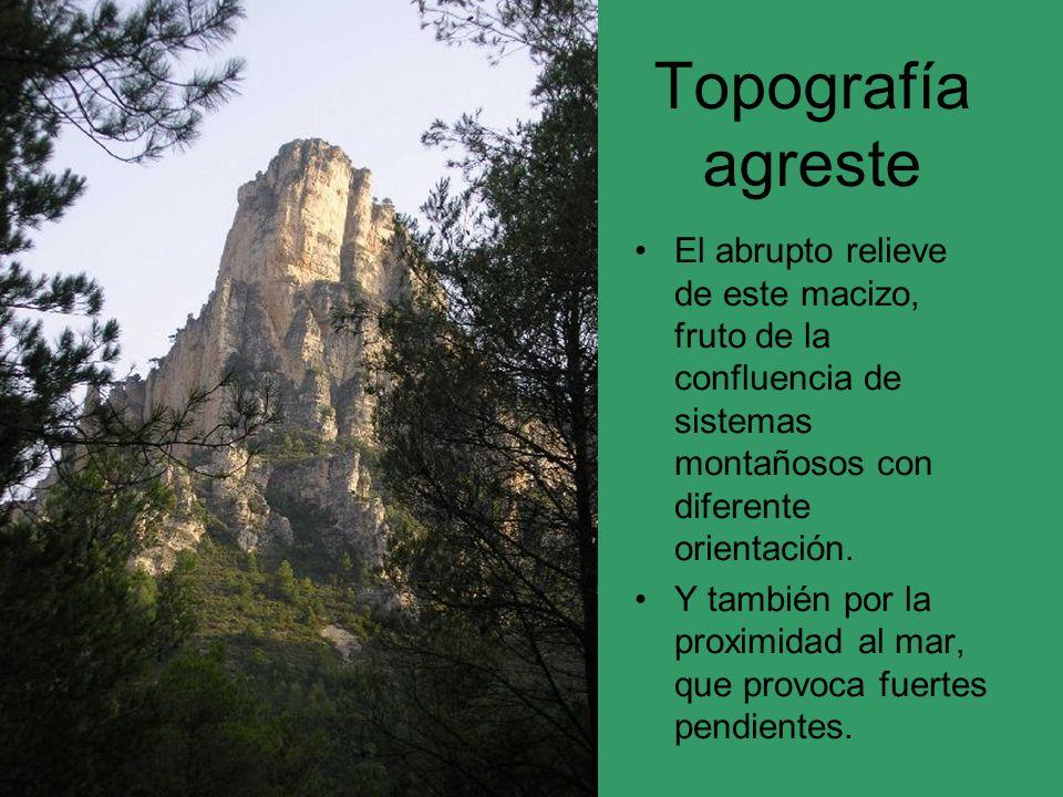 Topografía agreste El abrupto relieve de este macizo, fruto de la confluencia de sistemas montañosos con diferente orientación. Y también por la proxi