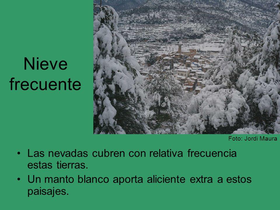 Nieve frecuente Las nevadas cubren con relativa frecuencia estas tierras. Un manto blanco aporta aliciente extra a estos paisajes. Foto: Jordi Maura