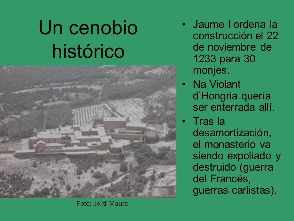 Un cenobio histórico Jaume I ordena la construcción el 22 de noviembre de 1233 para 30 monjes. Na Violant dHongria quería ser enterrada allí. Tras la
