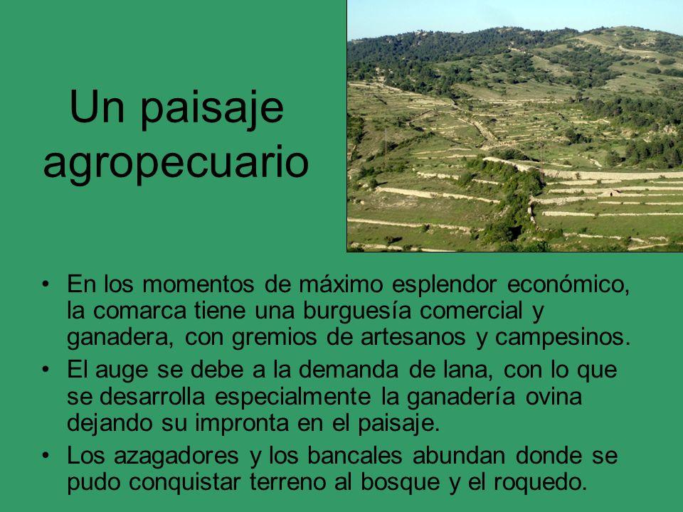 Un paisaje agropecuario En los momentos de máximo esplendor económico, la comarca tiene una burguesía comercial y ganadera, con gremios de artesanos y