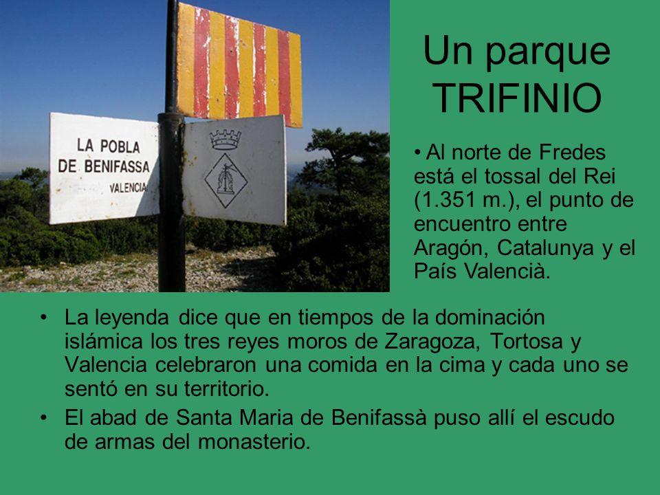 Un parque TRIFINIO La leyenda dice que en tiempos de la dominación islámica los tres reyes moros de Zaragoza, Tortosa y Valencia celebraron una comida