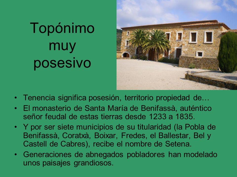 Topónimo muy posesivo Tenencia significa posesión, territorio propiedad de… El monasterio de Santa María de Benifassà, auténtico señor feudal de estas