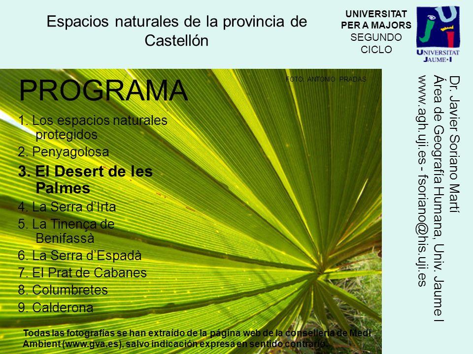 Microrreserva de flora La protección en el parque natural es máxima para algunas especies endémicas, raras o amenazadas, cuya conservación es de gran importancia.