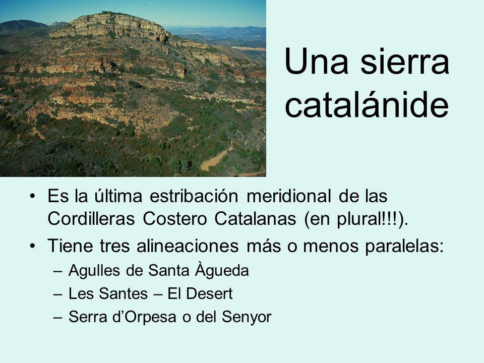 Una sierra catalánide Es la última estribación meridional de las Cordilleras Costero Catalanas (en plural!!!). Tiene tres alineaciones más o menos par