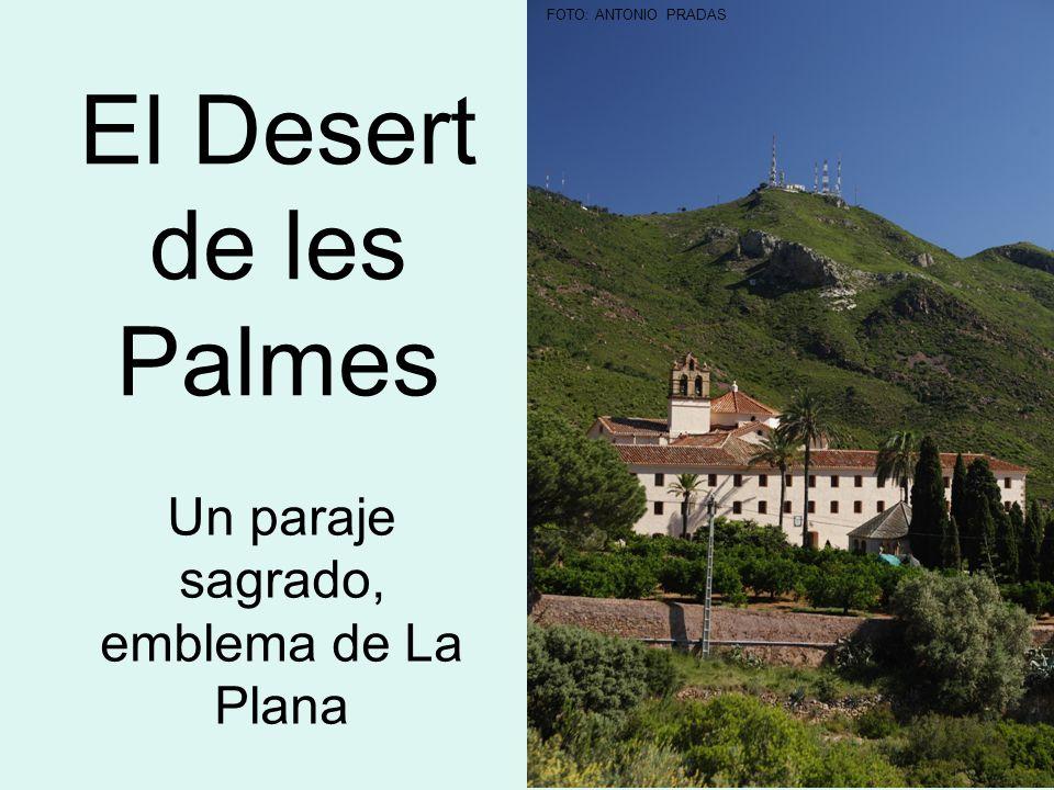 El Desert de les Palmes Un paraje sagrado, emblema de La Plana FOTO: ANTONIO PRADAS