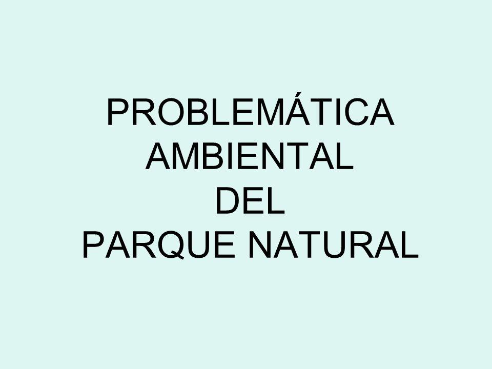 PROBLEMÁTICA AMBIENTAL DEL PARQUE NATURAL