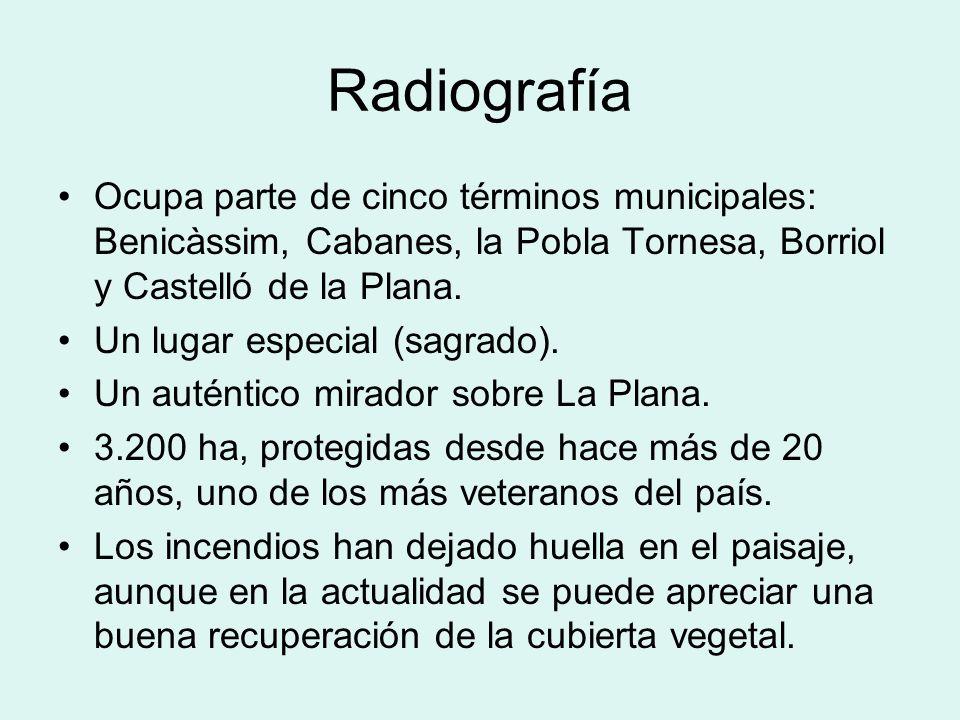Radiografía Ocupa parte de cinco términos municipales: Benicàssim, Cabanes, la Pobla Tornesa, Borriol y Castelló de la Plana. Un lugar especial (sagra