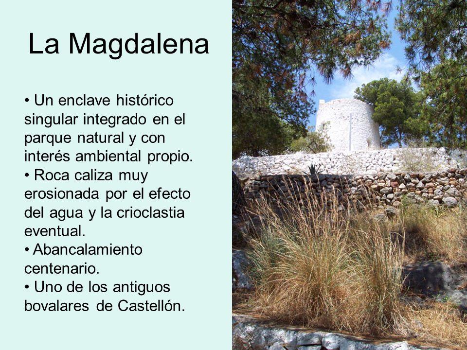 La Magdalena Un enclave histórico singular integrado en el parque natural y con interés ambiental propio. Roca caliza muy erosionada por el efecto del