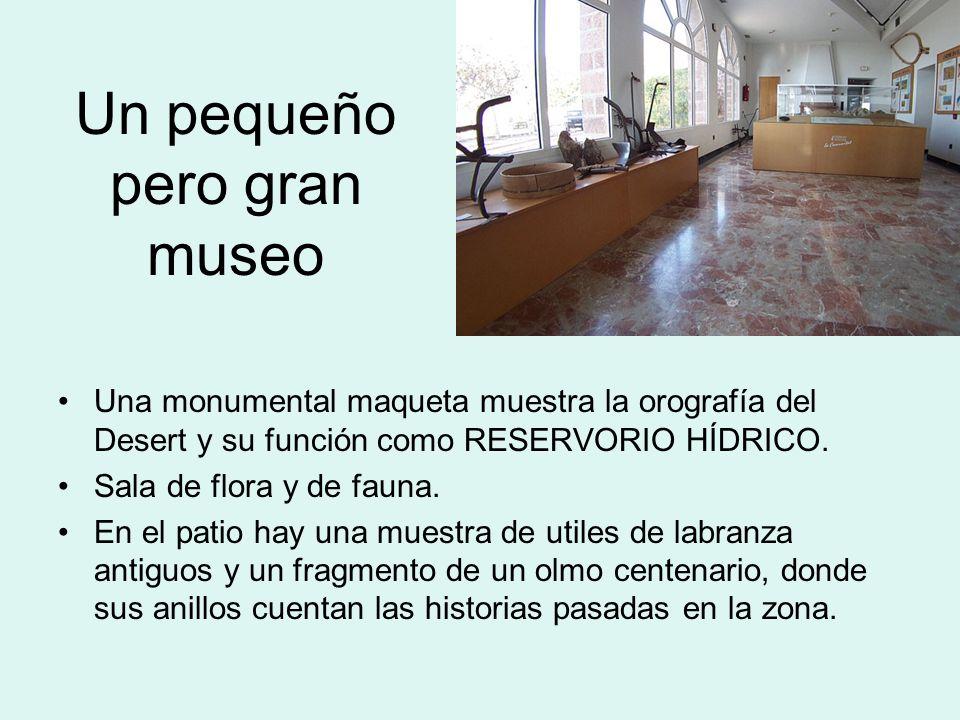 Un pequeño pero gran museo Una monumental maqueta muestra la orografía del Desert y su función como RESERVORIO HÍDRICO. Sala de flora y de fauna. En e