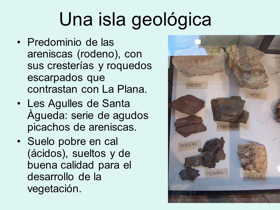 Una isla geológica Predominio de las areniscas (rodeno), con sus cresterías y roquedos escarpados que contrastan con La Plana. Les Agulles de Santa Àg