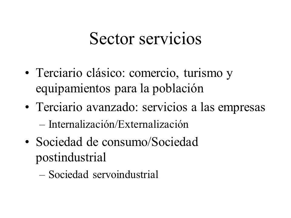 Sector servicios Terciario clásico: comercio, turismo y equipamientos para la población Terciario avanzado: servicios a las empresas –Internalización/