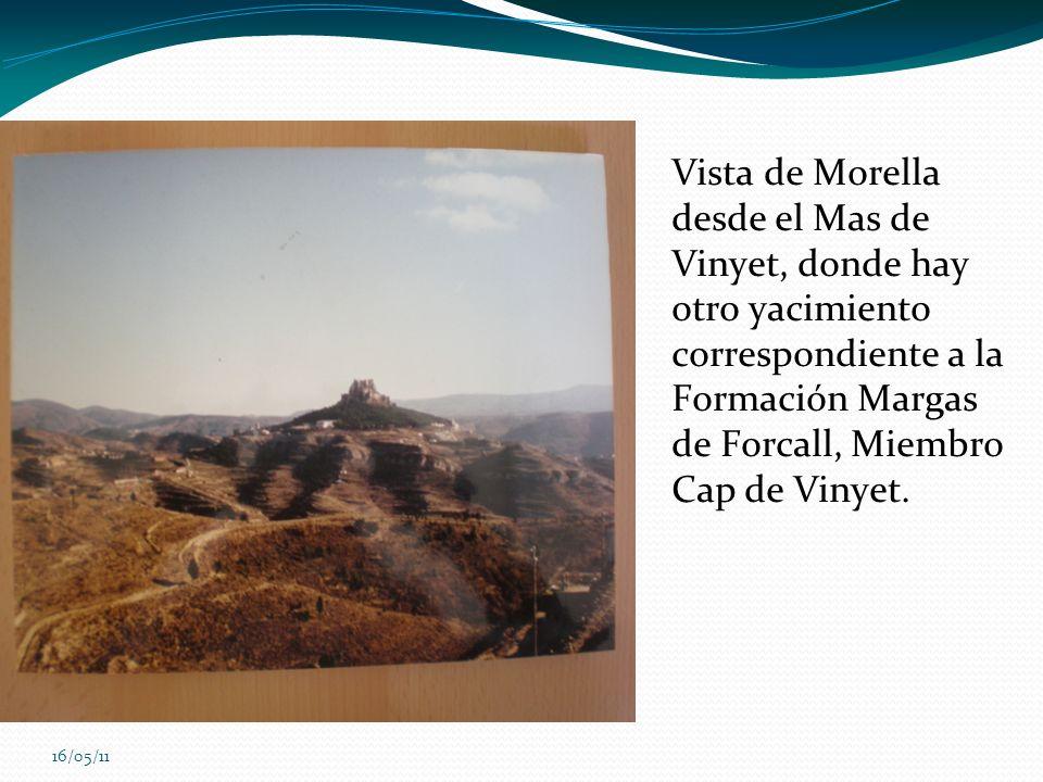 16/05/11 Vista de Morella desde el Mas de Vinyet, donde hay otro yacimiento correspondiente a la Formación Margas de Forcall, Miembro Cap de Vinyet.