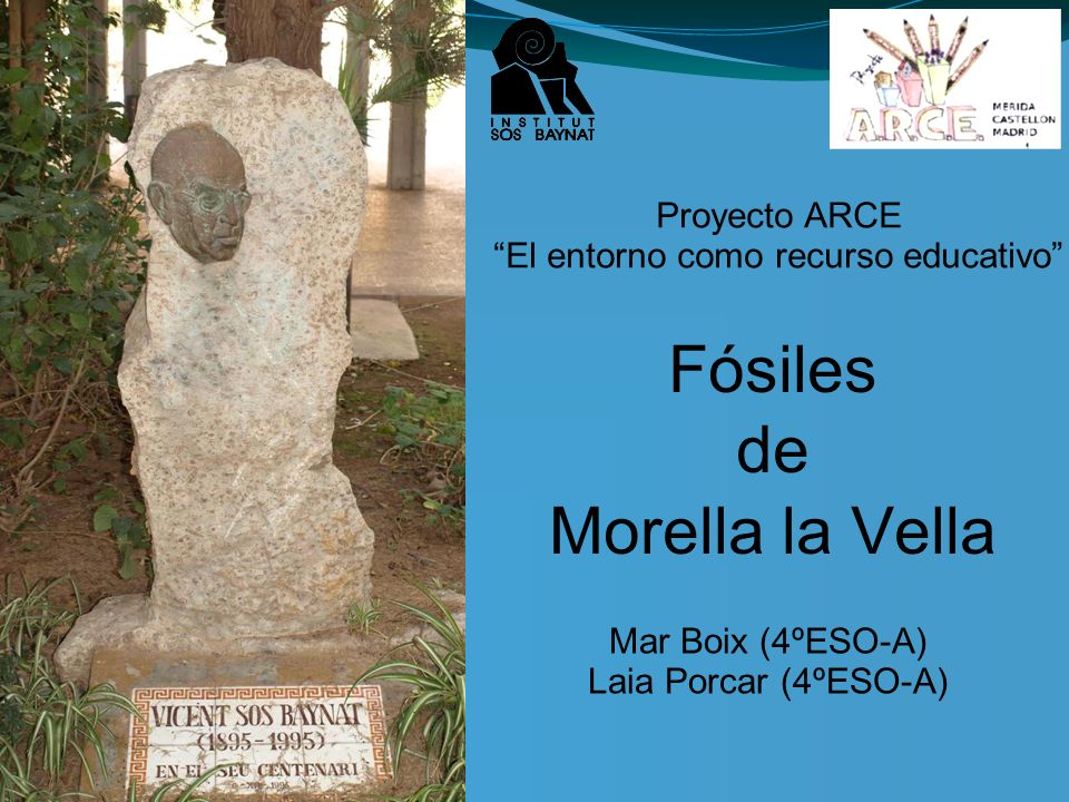 16/05/11 Fósiles de Morella la Vella Proyecto ARCE El entorno como recurso educativo Mar Boix (4ºESO-A) Laia Porcar (4ºESO-A)