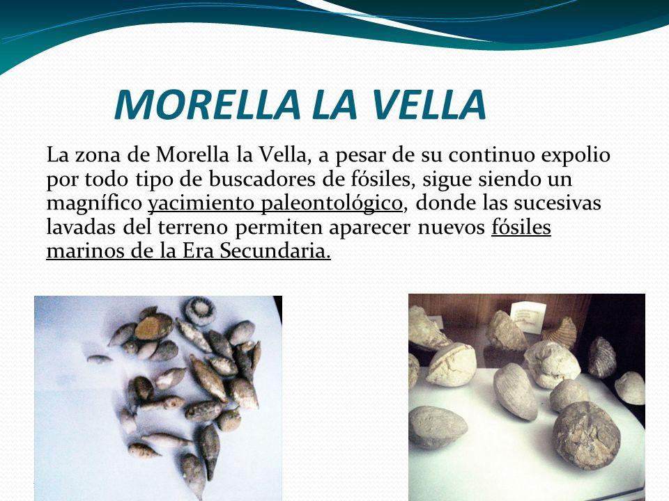 16/05/11 MORELLA LA VELLA La zona de Morella la Vella, a pesar de su continuo expolio por todo tipo de buscadores de fósiles, sigue siendo un magnífic