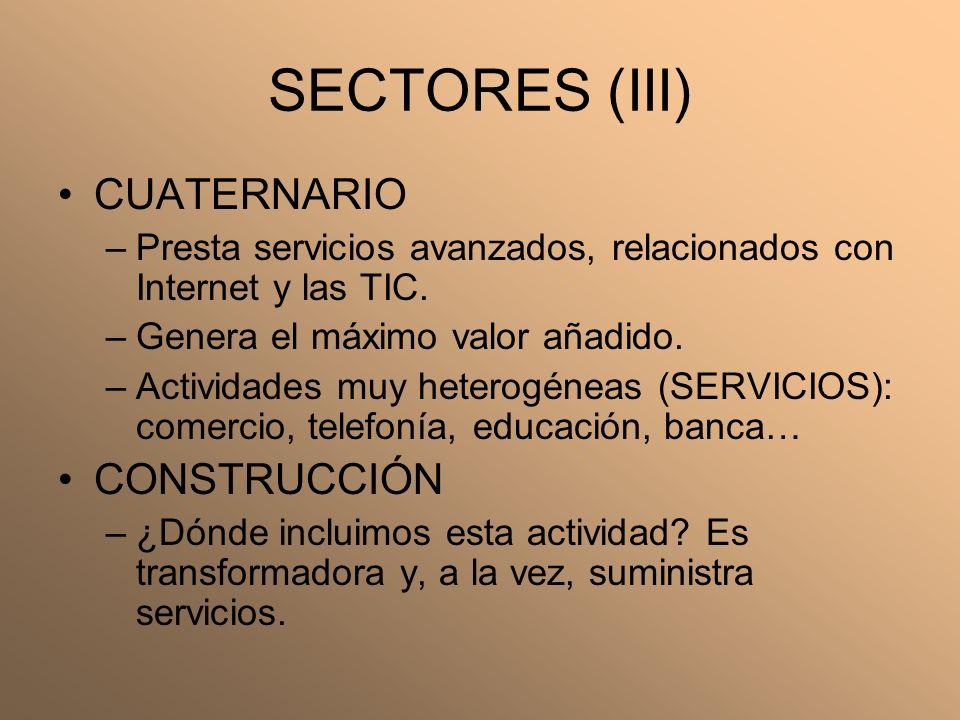 SECTORES (III) CUATERNARIO –Presta servicios avanzados, relacionados con Internet y las TIC. –Genera el máximo valor añadido. –Actividades muy heterog