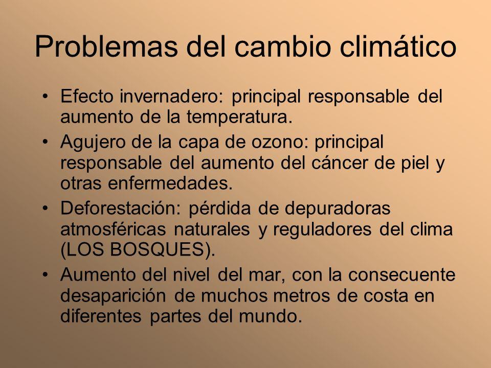 Problemas del cambio climático Efecto invernadero: principal responsable del aumento de la temperatura. Agujero de la capa de ozono: principal respons