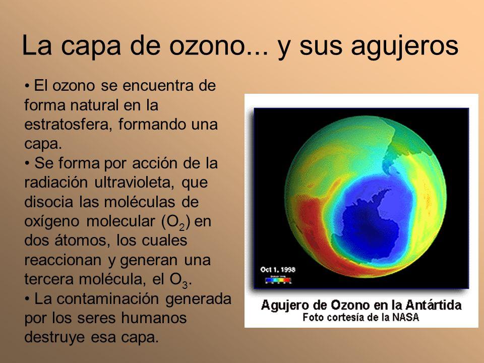 La capa de ozono... y sus agujeros El ozono se encuentra de forma natural en la estratosfera, formando una capa. Se forma por acción de la radiación u