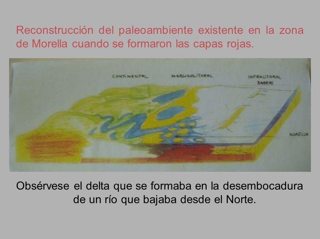 Reconstrucción del paleoambiente existente en la zona de Morella cuando se formaron las capas rojas. Obsérvese el delta que se formaba en la desemboca