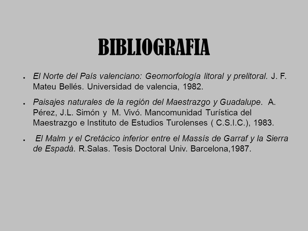 BIBLIOGRAFIA El Norte del País valenciano: Geomorfología litoral y prelitoral. J. F. Mateu Bellés. Universidad de valencia, 1982. Paisajes naturales d