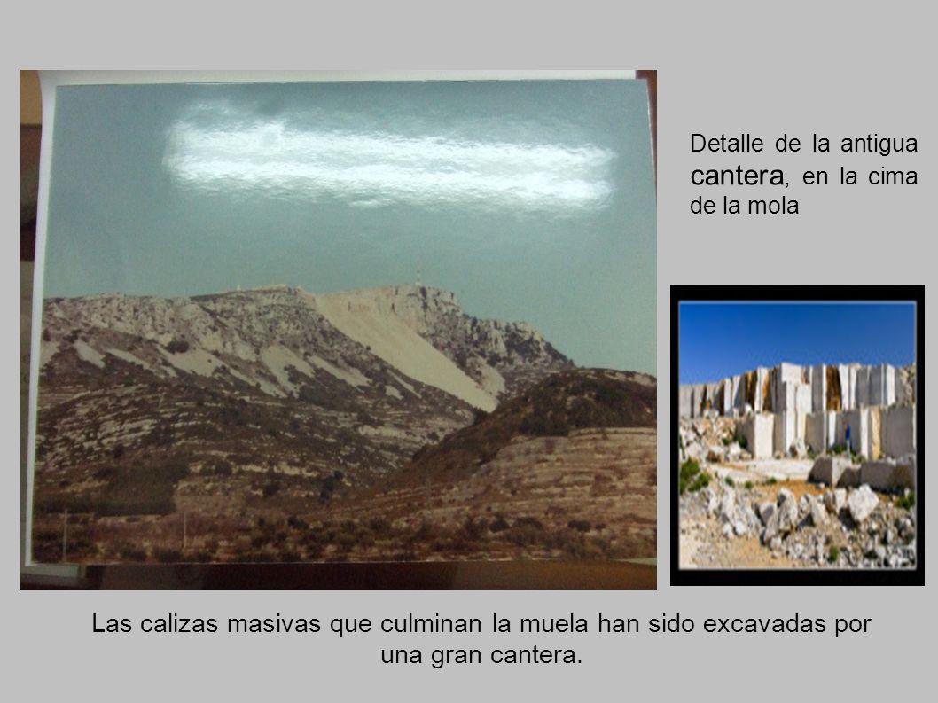 Detalle de la antigua cantera, en la cima de la mola Las calizas masivas que culminan la muela han sido excavadas por una gran cantera.