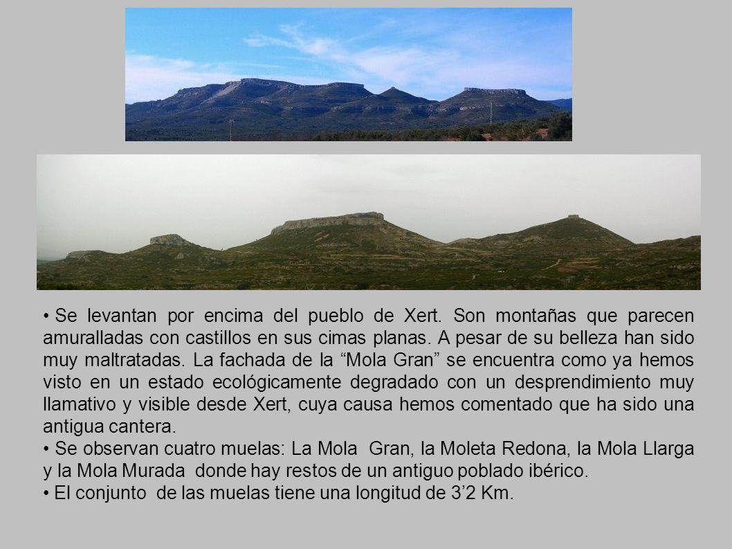 Se levantan por encima del pueblo de Xert. Son montañas que parecen amuralladas con castillos en sus cimas planas. A pesar de su belleza han sido muy