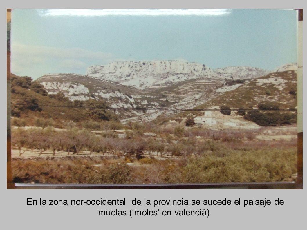 En la zona nor-occidental de la provincia se sucede el paisaje de muelas (moles en valencià).