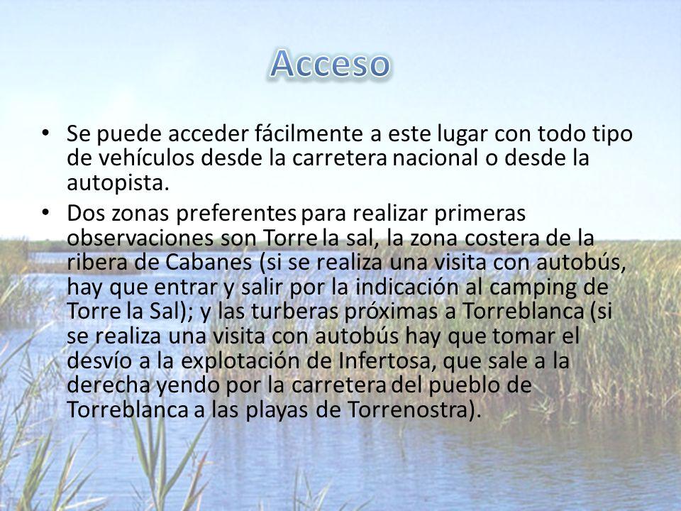 Se puede acceder fácilmente a este lugar con todo tipo de vehículos desde la carretera nacional o desde la autopista.