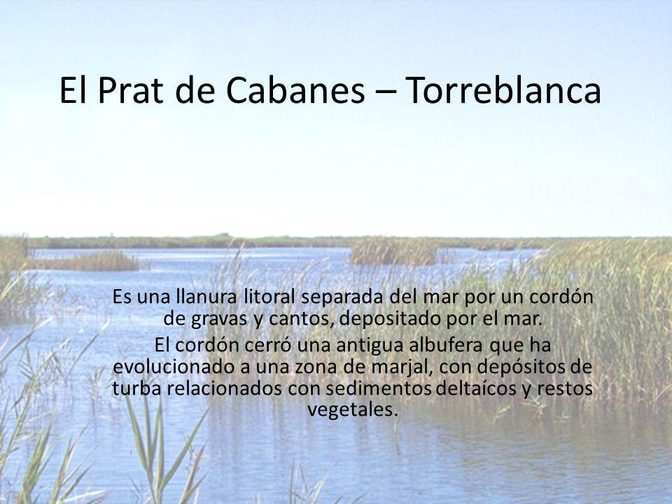 El Prat de Cabanes – Torreblanca Es una llanura litoral separada del mar por un cordón de gravas y cantos, depositado por el mar.