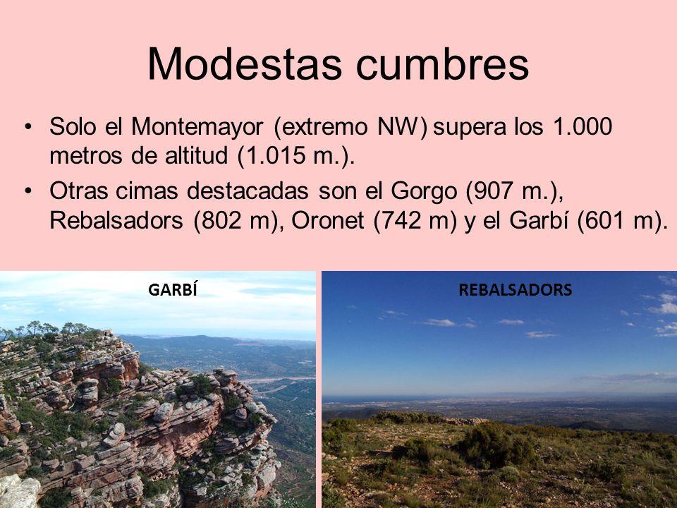 Escalonamiento hacia el litoral Las montañas van perdiendo altitud hacia el litoral hasta llegar a lHorta o el Camp de Morvedre (la llanura).