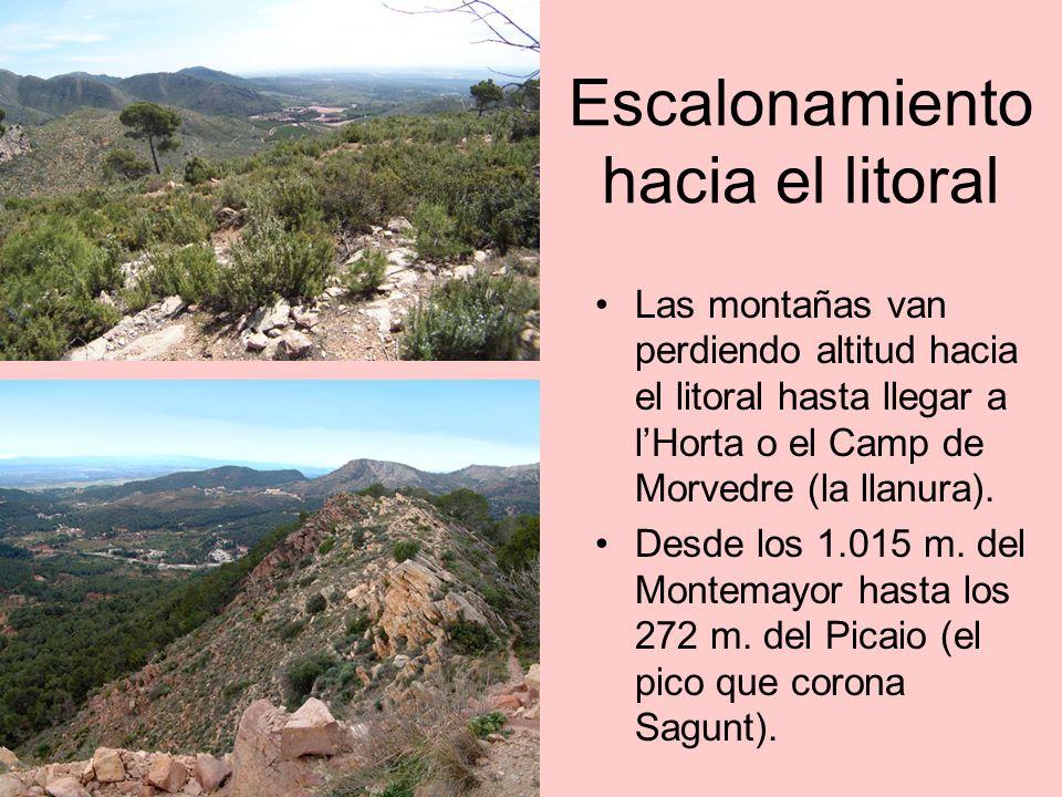 Profunda erosión por estratos Los populares rodenos dan lugar a un sugerente relieve ruiniforme, bien visible en el Picaio, el Garb í o el Puntal de la Vella.