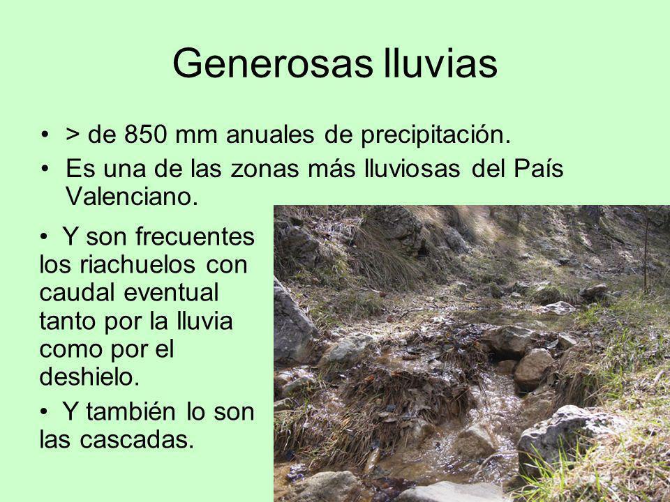 Generosas lluvias > de 850 mm anuales de precipitación. Es una de las zonas más lluviosas del País Valenciano. Y son frecuentes los riachuelos con cau